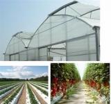 نایلون کشاورزی کیسه کشت هیدروپونیک