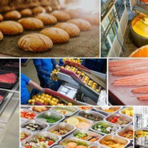 ارایه خدمات فنی ومهندسی و مشاور در امور صنایع غذایی