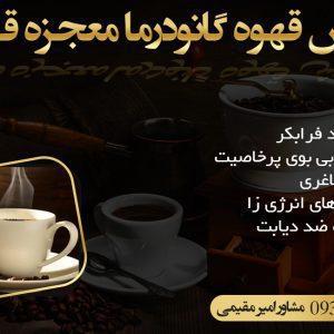 قهوه گانودرما در کرج